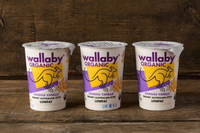 Thumb 400 wallaby organic lowfat yogurt banana vanilla 3 pack 6 oz